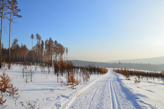 cesta ve sněhu