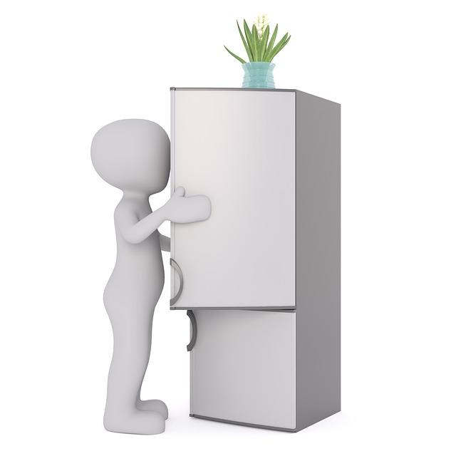 kytka na lednici