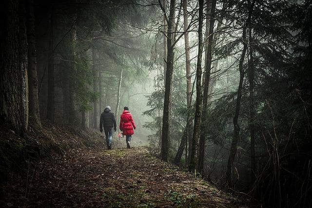 chůze lesem.jpg